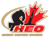 Logo for HEO website